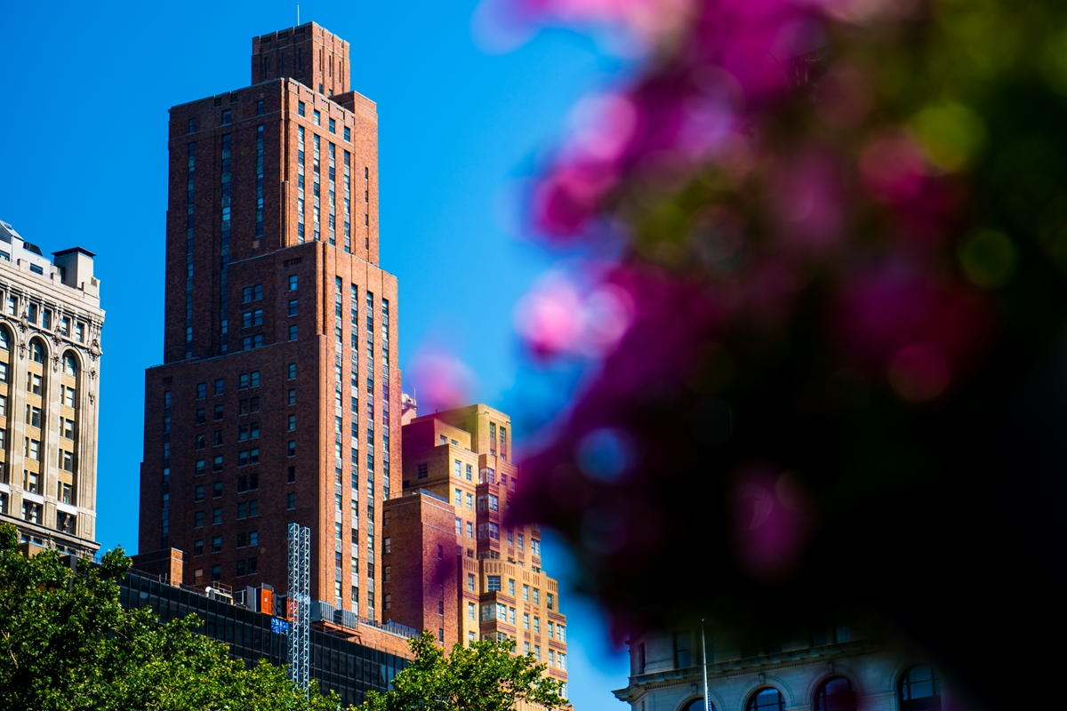 Manhattan-Flowers.jpg