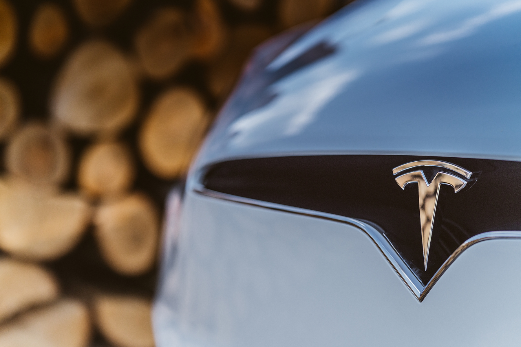 White-Logo-Tesla-Model-X-Wooden-Logs
